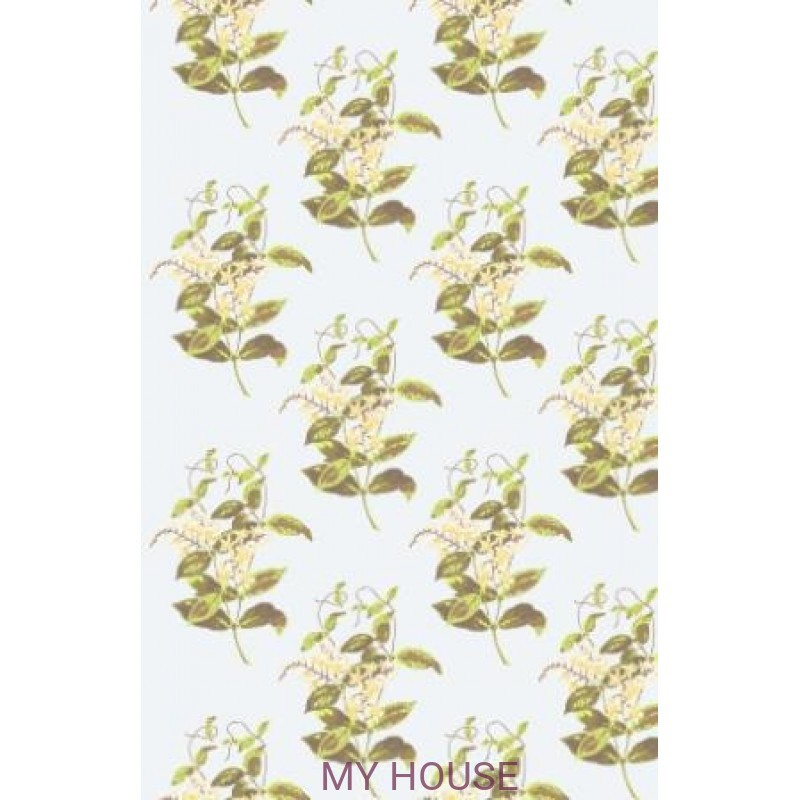 Обои Collection of Flowers 81-6023 Cole & Son