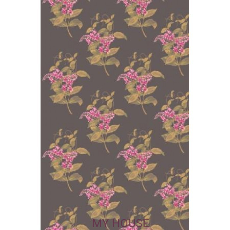 Обои Collection of Flowers 81-6024 Cole & Son