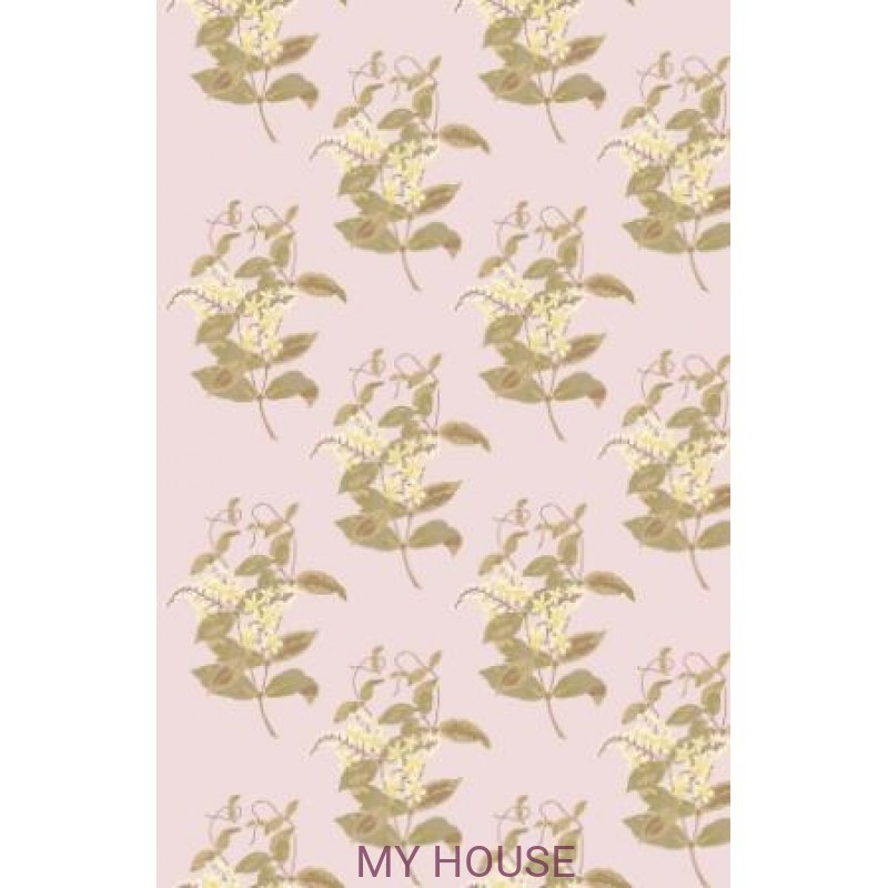 Обои Collection of Flowers 81-6025 Cole & Son