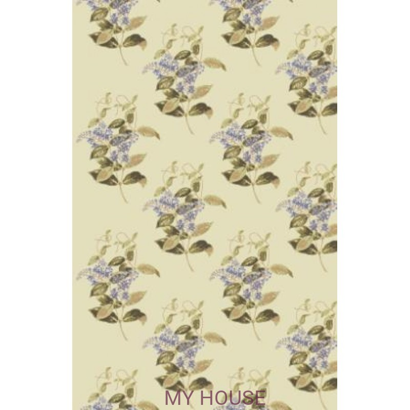 Обои Collection of Flowers 81-6026 Cole & Son