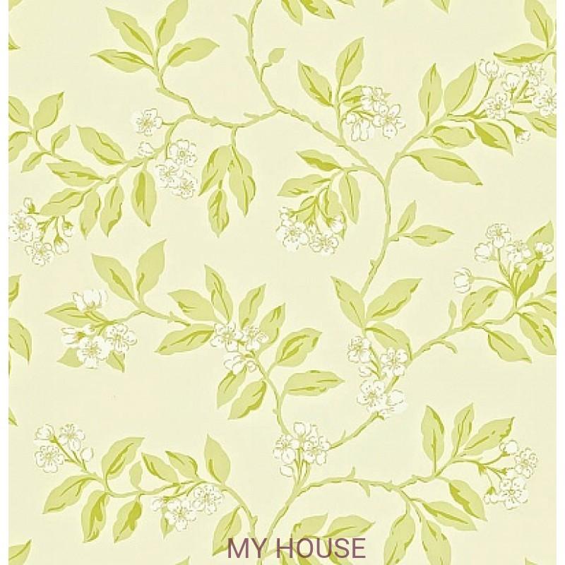 Обои Maycott 211992 Blossom Bough - Cream/Sage Sanderson