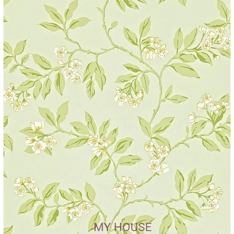 Обои Maycott 211993 Blossom Bough - Duck Egg/Sage Sanderson