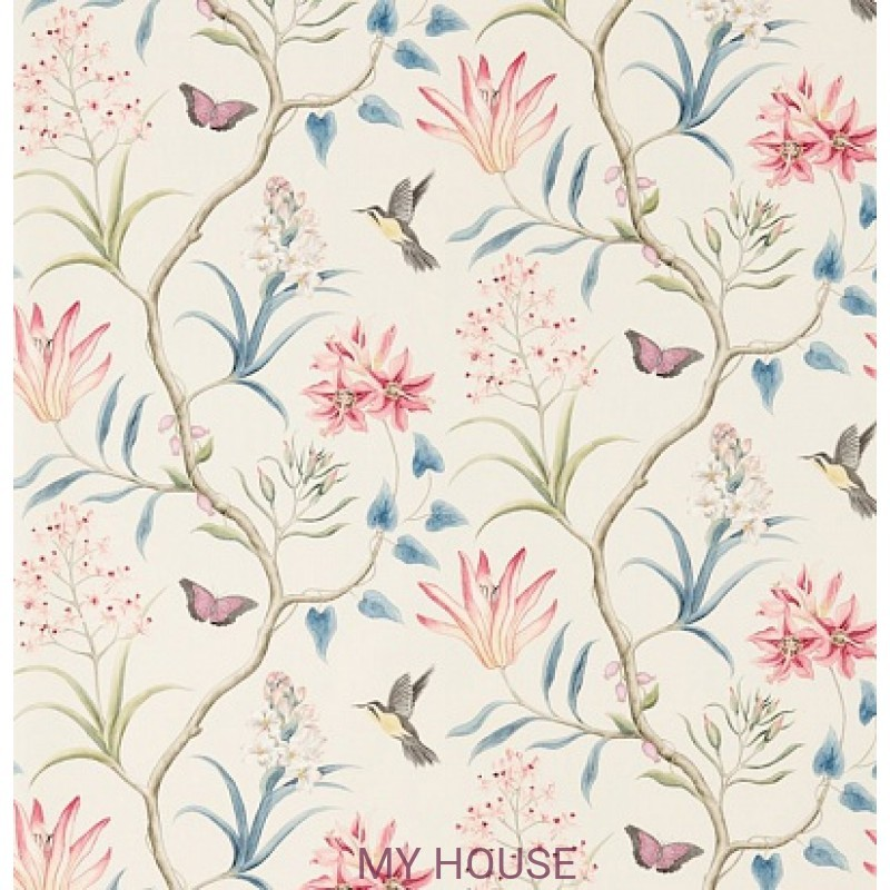 Обои Voyage of Discovery 213387 Clementine Indienne Sanderson