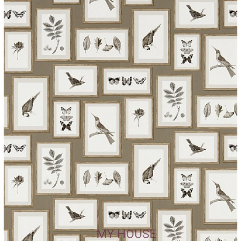 Обои Voyage of Discovery 213397 Picture Gallery Taupe/Sepia Sand