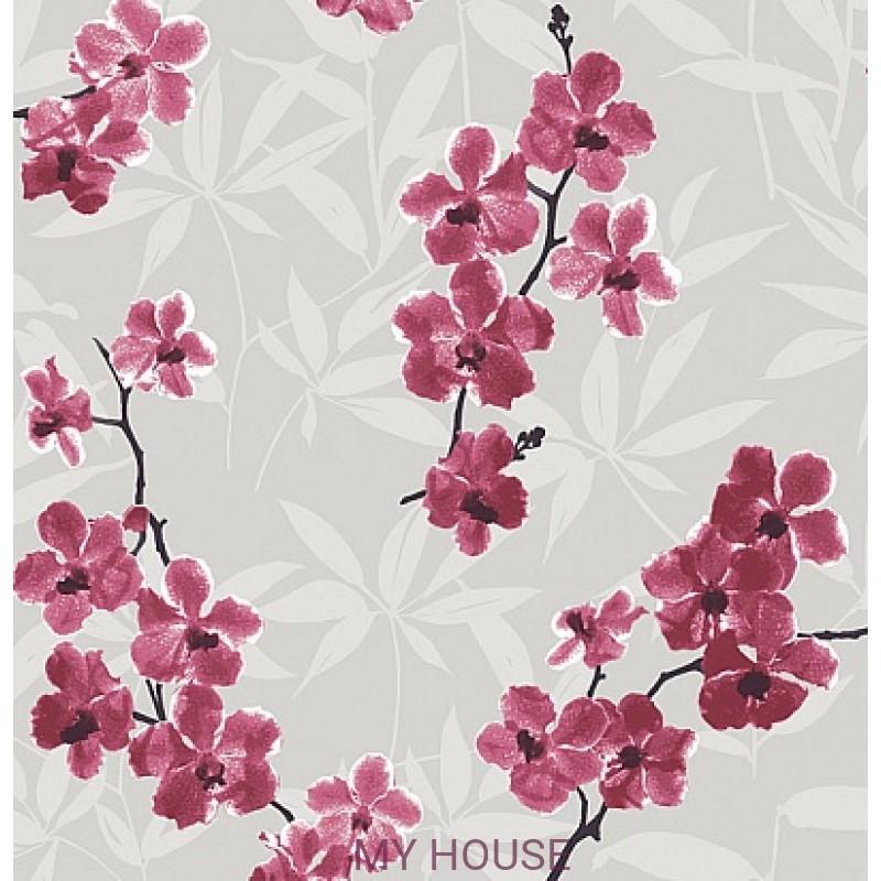 Обои Quinta QUI102 Orchidee Khroma