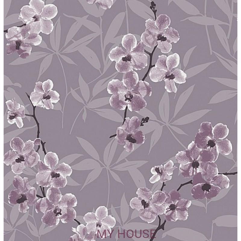 Обои Quinta QUI103 Orchidee Khroma