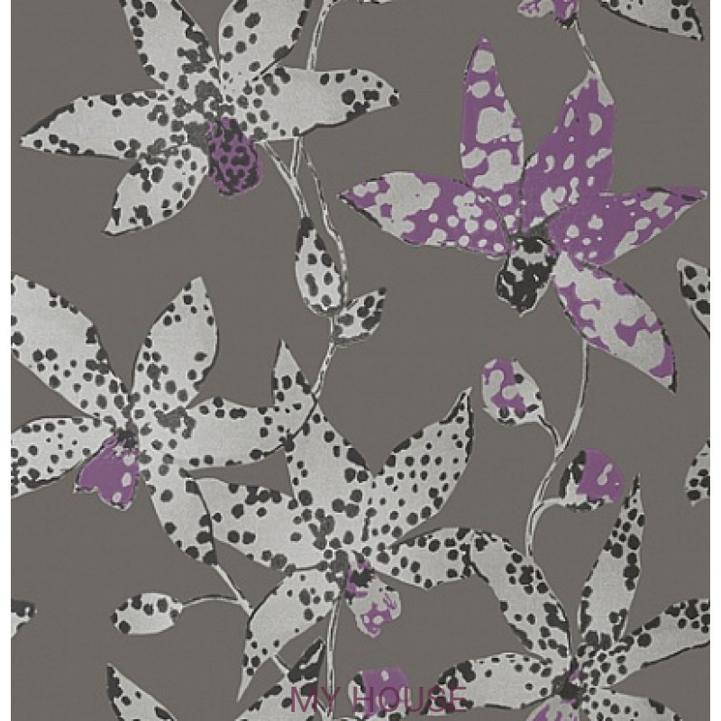 Обои Seraphina AT6047 Spotted orchid Silver on Charcoal Anna Fre